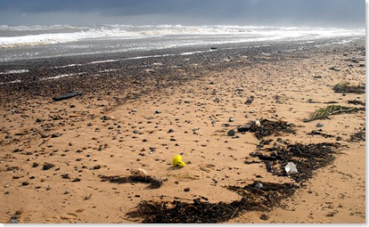 Sea litter - After the storm - Southwold 4