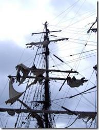 Roald Amundsen sails
