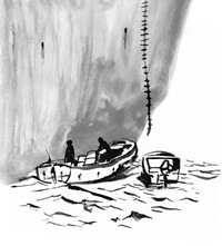 Pirate illustration by Kate O'Connor for the NY Times