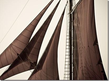 Roseway Sails