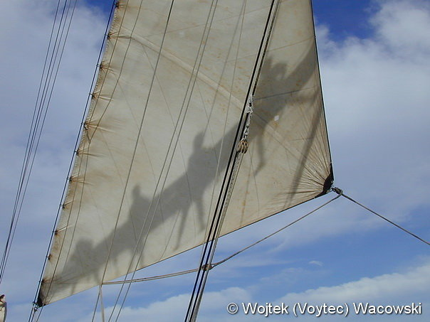 Concordia by Wojtek Voytec Wacowski